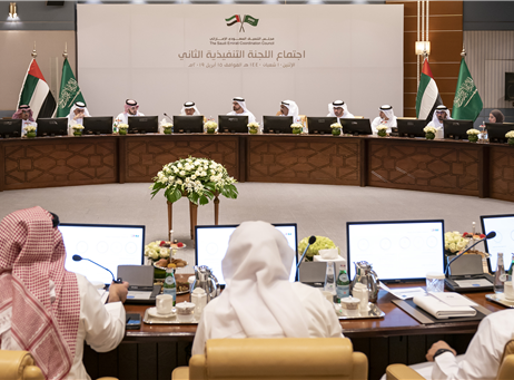 forming 7 committees to support the Saudi-Emirati...